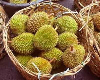 StreetDeal Travel & Vacation Deal: 1 Day Durian Tour