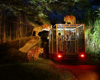 Bali Night Safari - Indonesia Citizen Promo