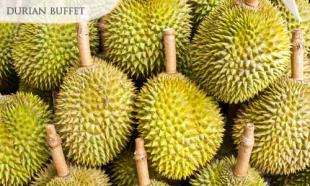 51% off 1 Day JB Durian Buffet Tour + Coach & Land Transfer