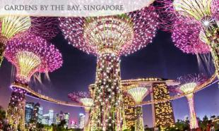 UP TO 36% off Gardens by the Bay + Underwater World & Dolphin Lagoon